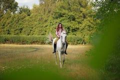 le bel hiver d'horizontal de cheval de fille Photo stock