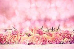 Le bel oeillet de floraison fleurit sur le plancher avec filtré par le bokeh rose doux Image libre de droits