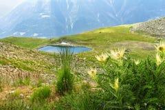 Le belle alpi idilliache abbelliscono con il lago e le montagne di estate Immagine Stock Libera da Diritti