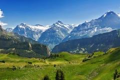 Le belle alpi idilliache abbelliscono con le montagne di estate Immagine Stock