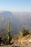 Montagne delle Ande Immagini Stock