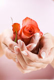Le belle mani con sono aumentato Fotografie Stock