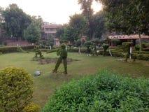 Le belle piante di giardinaggio gradiscono la gente Immagini Stock Libere da Diritti