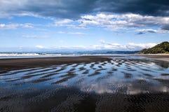 Le belle riflessioni su Waiotahe tirano in Opotiki, Nuova Zelanda Immagini Stock Libere da Diritti