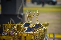 Le belle tazze stanno aspettando i loro vincitori Premi per i partecipanti dell'esposizione canina Macro Fuoco molle fotografie stock