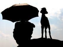 Le berger photographie stock libre de droits