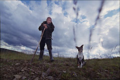 Le berger et le chien Photos libres de droits