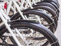 le bici della Posteriore-ruota sono parcheggiate Immagini Stock Libere da Diritti