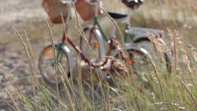 Le biciclette d'annata con la merce nel carrello dei fiori stanno in un campo dal mare video d archivio