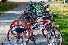 Le biciclette multicolori della bella montagna sportiva per la ricreazione e lo sport sono parcheggiate in una fila La Bielorussi immagine stock