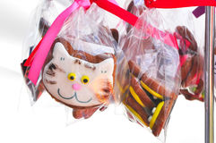 Le biscuit fabriqué à la main ressemble au petit chat Photos stock