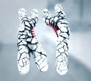 Le blanc cassé ou déserté a coloré des chromosomes de x et de y illustration stock