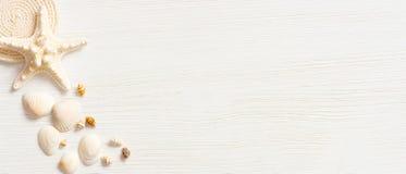 Le blanc a donné à la surface une consistance rugueuse en bois décorée des coquilles de mer photos libres de droits