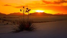 Le blanc ponce le coucher du soleil de monument national, Nouveau Mexique - Timelapse Images stock
