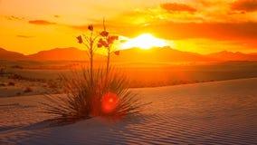 Le blanc ponce le coucher du soleil de monument national, Nouveau Mexique - Timelapse Photos libres de droits