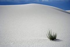 Le blanc sable le monument national Images libres de droits