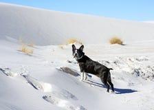 Le blanc sable le monument national Photo libre de droits