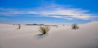Le blanc sable le monument national avec des dunes de désert Photos libres de droits