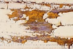 Le blanc superficiel par les agents a peint le fond de conseil en bois avec la texture Images libres de droits