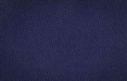Le bleu de claret fouettent - la texture en cuir photographie stock
