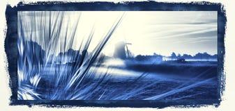 Le bleu de Delft Photos libres de droits
