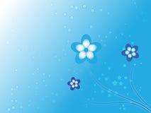 Le bleu fleurit le fond Photos stock