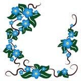Le bleu fleurit le fond Photo libre de droits