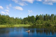 le bleu opacifie le lac de forêt Images stock
