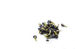 Le bleu a séché des fleurs de tisane sur le fond blanc Photographie stock