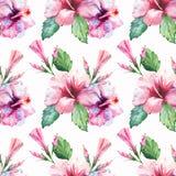 Le bleu violet rouge-rose tropical d'Hawaï de modèle floral merveilleux tropical de fines herbes vert clair d'été fleurit la ketm Images stock