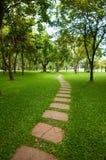 Le bloc en pierre avec l'herbe verte. Photographie stock libre de droits