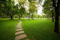 Le bloc en pierre avec l'herbe verte. Images libres de droits