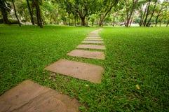 Le bloc en pierre avec l'herbe verte Photo libre de droits