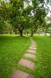Le bloc en pierre avec l'herbe verte Photos libres de droits