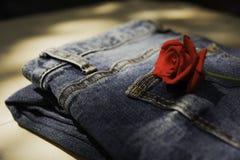 Le blue jeans hanno piegato con la rosa rossa sulla tavola di legno e sulle sedere di legno Fotografia Stock