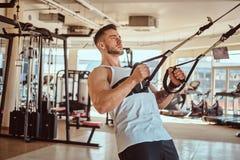 Le bodybuilder puissant attirant fait des exercices sur les appareils s'exer?ants photos libres de droits