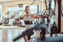 Le bodybuilder puissant attirant fait des exercices sur les appareils s'exer?ants images libres de droits