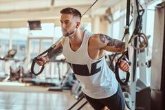 Le bodybuilder puissant attirant fait des exercices sur les appareils s'exer?ants photos stock