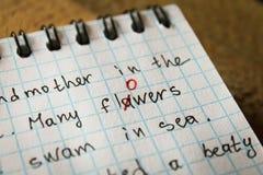 Le bogue est corrigé dans le stylo rouge dans un carnet Photo libre de droits