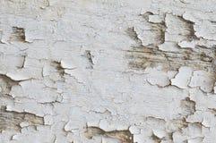 Le bois a épluché le fond de texture de couleur photo libre de droits