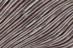 Le bois a balayé la surface à nervures le conseil gris que naturel a incliné la base parallèle de fond de rayures images stock