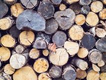 Le bois de charpente en bois non-traité empilé de coupe de divers types forme des tailles et des types image libre de droits