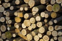 Le bois de chauffage a assaisonné dans les piles avant l'horaire d'hiver photographie stock