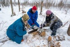 Le bois de chauffage dans le voyage de ski, le 22 février 2016 Image libre de droits
