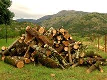 Le bois de chauffage dans une vallée de montagne images libres de droits