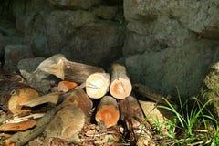 Le bois de chauffage se trouve sous un rebord en pierre caché de la pluie image stock