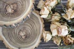 Le bois de coupe avec les roses sèches ; roses sèches sur un arbre de coupe Photos stock