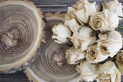 Le bois de coupe avec les roses sèches ; roses sèches sur un arbre de coupe Image libre de droits