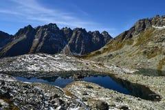 Le bois de parc de vert de ciel bleu de nature de montagne opacifie le réflexe de lac gentil Photographie stock
