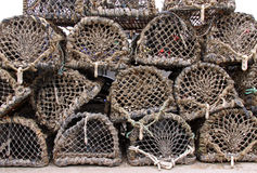 Le bois et le réseau critiquent et les bacs de langoustine/trappes Photos libres de droits